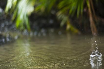 Maui_Klaas-5162